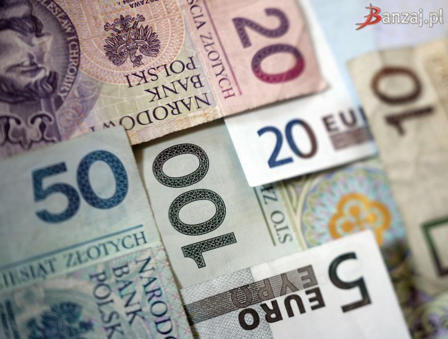 7b3c28d258350b Czynniki wpływające na wartość pary walut EUR PLN   Jaworznicki ...
