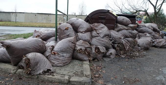 Spółdzielnia Mieszkaniowa Górnik wywiozła 4,5 śmieci, głównie odpadów biodegradowalnych.