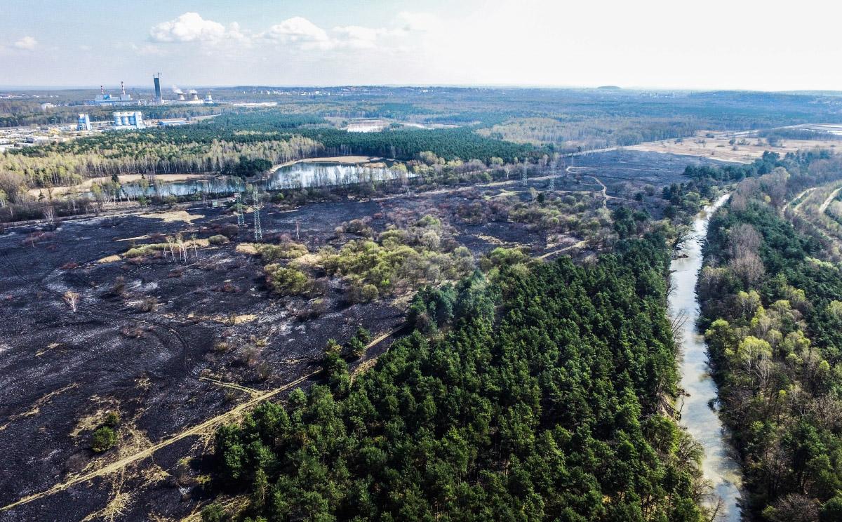 Pożar łąk i nieużytków przy ul. Promiennej.