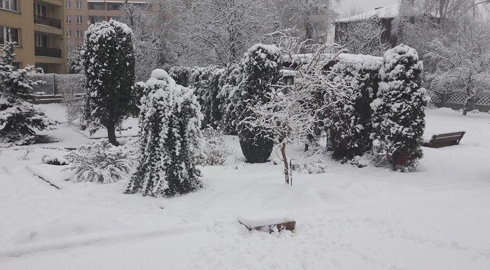 lubowiec-zima