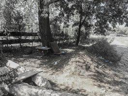 zwłoki park podłęże jaworzno