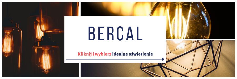 https://bercal.pl/oferta/oswietlenie-wewnetrzne/lampy-lazienkowe.html